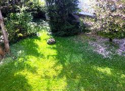 Aussicht in Garten