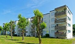 Grosszügige Wohnung neu renoviert!