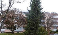 GROSSRÄUMIG (WOHNEN-ESSEN)