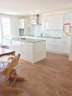 Wohnküche mit Esszimmer