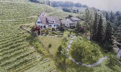 Exklusive Lage am Südabhang vom Goldenberg