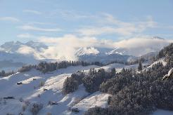 Winter erleben in den Bündner Bergen - 8 Zimmer Chalet am Waldrand