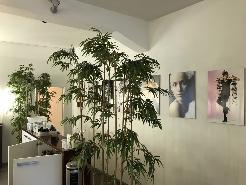 Büro, Gewerbe, Studio