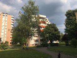 Ruhige Wohnung Bezug auf Anfrage(Reduit und Parkplatz)