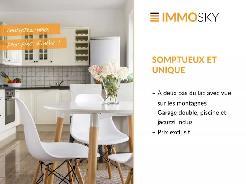 ImmoSky_SkyNet_Banner_43288_V3.jpg